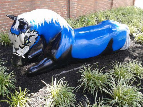 horse blue louisville