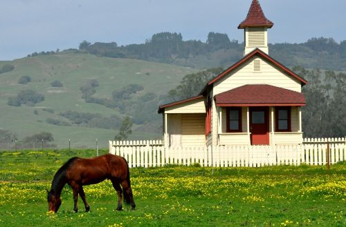 horse pastoral old house