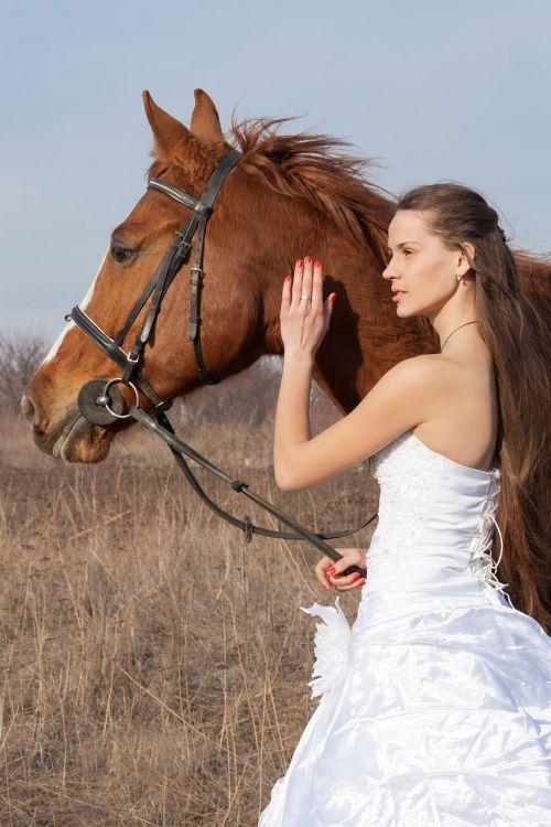horse wedding dress field