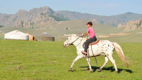 horse riding ride