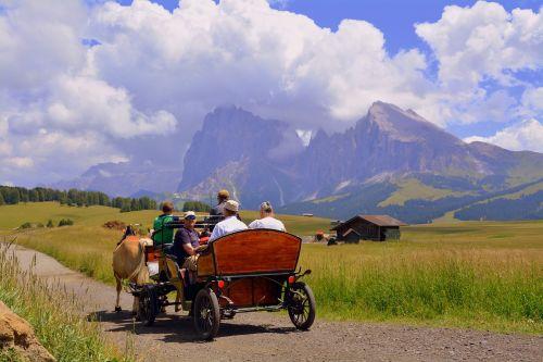 horse calash carrozza