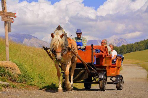 horse calash dolomites