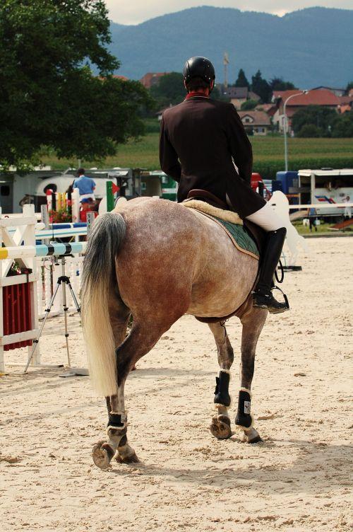 horse ride tournament