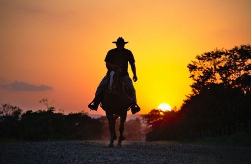 horse cowboy silhouette