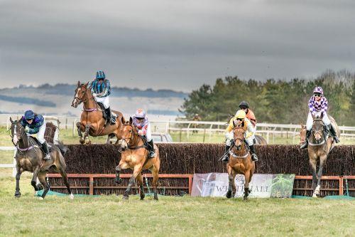horse race equestrian