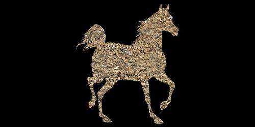 horse  animal  vintage horse
