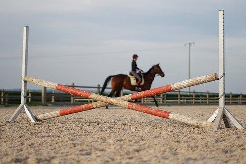 horse  ride  reiterhof