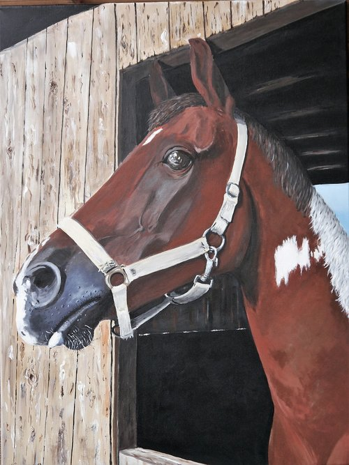 horse  painted  acrylic paints