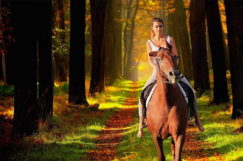 horse  girl  enchantment