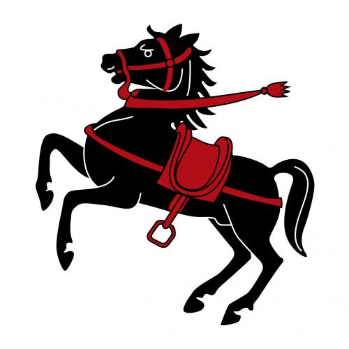 horse jumping coat