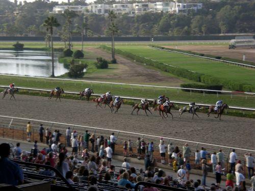 horse races jockey