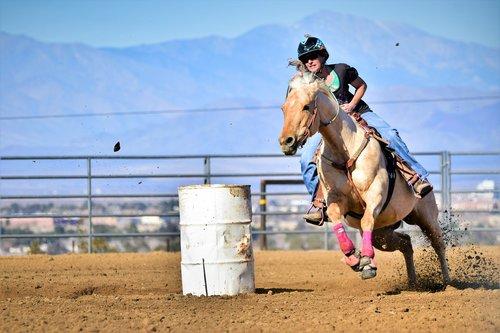 horse  barrel race  rider