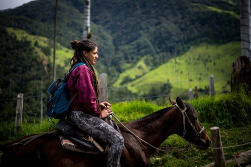 horse  horse rider  woman