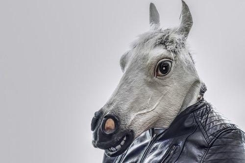 horse  leather jacket  mask
