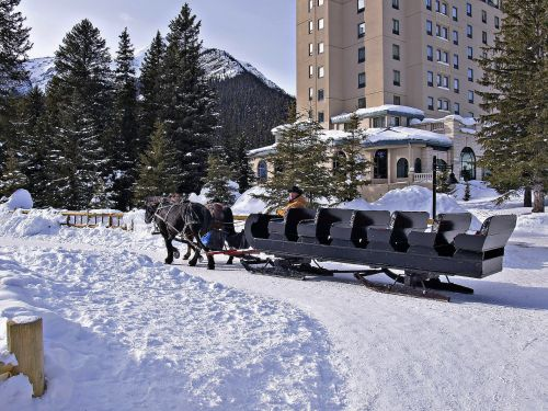 horse sled lake louise
