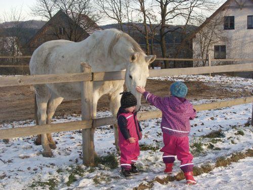 horse children dear