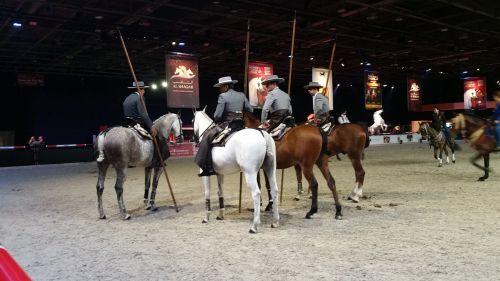 horse equestrian show