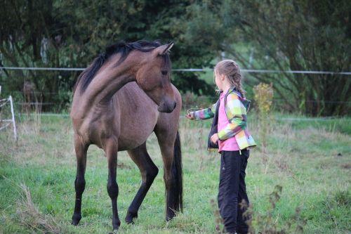 horse girl friendship