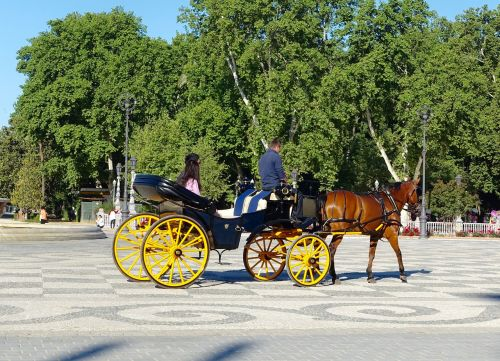 horse and cart carriage traditional