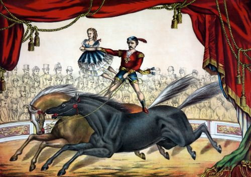 Horse Circus Act Painting