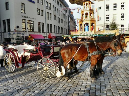horse drawn carriage carriage rides neumarkt