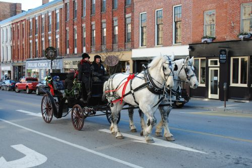 Horse-Drawn Carriage Port Hope