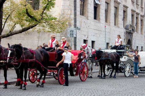 horse-drawn carriages tourists krakow
