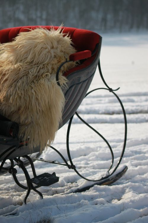 horse drawn sleigh winter snowfield