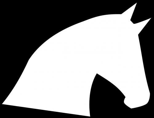 horse head horse head