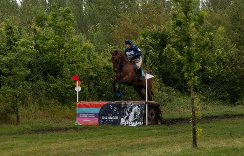 horse jumping  cross country jumping  horse