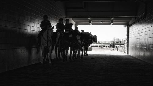 horse race race track derby