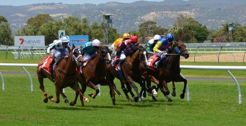 horse racing riding betting
