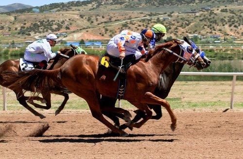 horse racing  track  jockey
