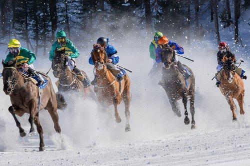 horse racing  gallop  jockey