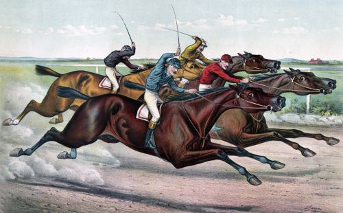 Horse Racing Neck & Neck