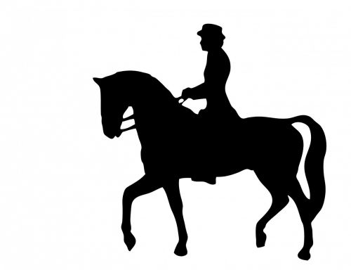 horse rider horse riding black