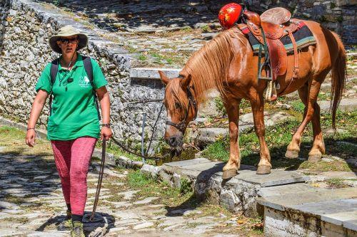 žirgais,veikla,turizmas,laisvalaikis,arklys,gyvūnas,poilsis,nuotykis,milies,pelion,Graikija