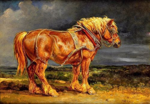Horse Surrounded By A Storm