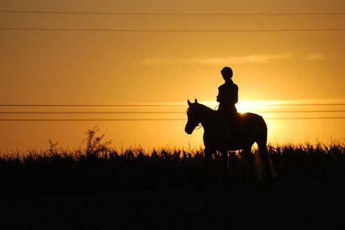 horseback riding sunset horse