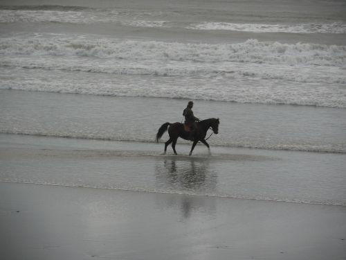 horseback riding beach ocean