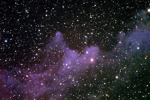 horsehead nebula stars starry