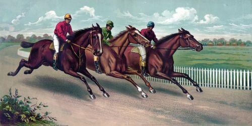 horsem horses racehorse racehorses