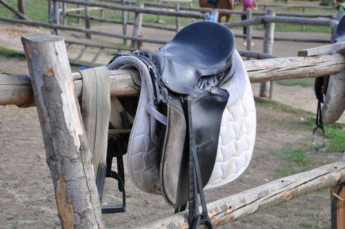horses riding saddle