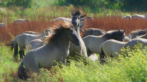 horses meadow willow painting