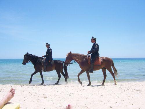 arkliai,smėlis,sumontuota policija,policija,vandenynas,gyvūnas,papludimys,kelionė