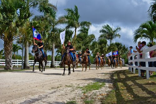 horses people parade