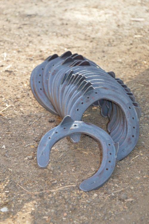 horseshoe horse iron