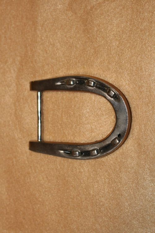horseshoe cowboy buckle