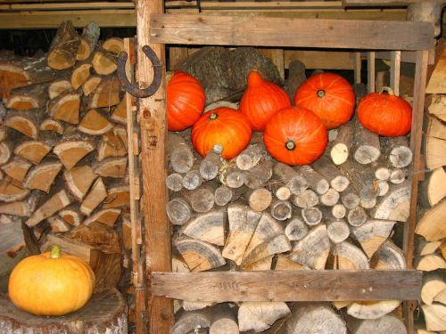 horseshoe wood pile pumpkin