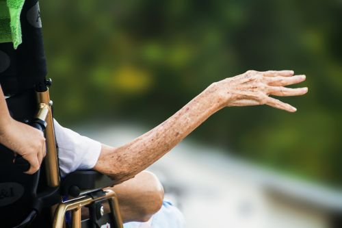 hospice wrinkled hand elderly